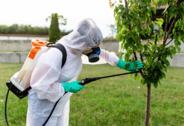 Perché scegliere la bioprotezione come alternativa alla disinfestazione chimica